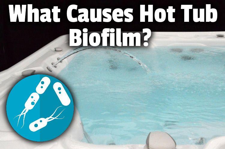 what causes biofilm lg